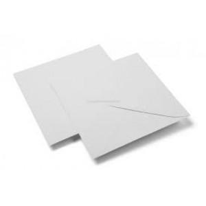 Enveloppes vierges non imprimées